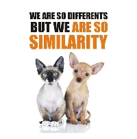 We Are So Differents But We Are So Similarity