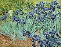 ATC Flower Series #6:  Irises