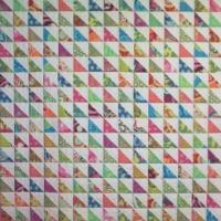 Reddit Quilters Half-Square Triangle Exchange