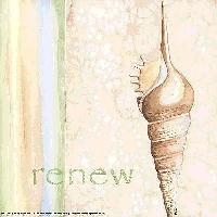 Renewal Swap