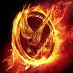 Hunger Games in a Bag