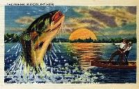 I got this postcard... International Swap