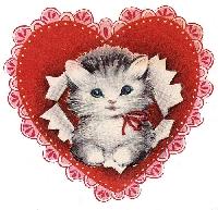 Meow-intine =^~^=