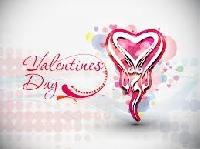 Valentine's Day Profile Comment