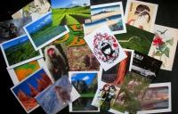 Please Send Me 6 Cards (21/02/2013)