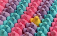 Edibles: Easter Sweet ~ Quick & Inexpensive #2