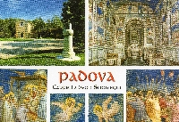 A multiwiev card