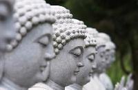 Buddha Postcard #5