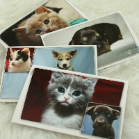 Animal Note Card with Small Gift