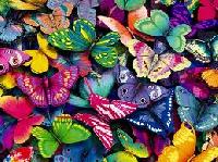 I Love Butterflies #2