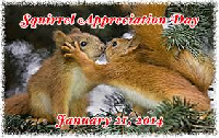 squirrel appreciation day- profile decorations (3)