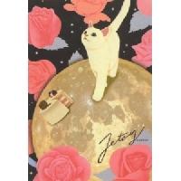 Kitty Cat Post Card Swap USA