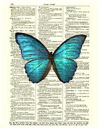 USAPC: DICTIONARY ATC SERIES #6 - BUTTERFLY!