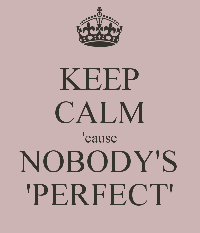 NoBodys PerfectT  swaP USA