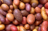 Pinterest Recipe Collection #5:Potato