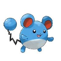 Pokemon Profile Decorate #5 - Marill