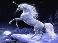 Pinterest: Mythical Creatures - Unicorns!