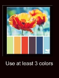 **PBP One Bright Palette**