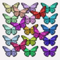 ATTENTION SWAPPERS: Butterfly ATC: USA ONLY