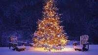 APDG ~  Winter Wonderland