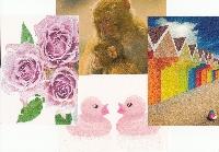 Newbie Postcard - Intl (Feb)