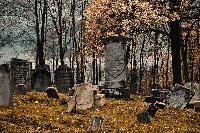 Cemetery Photography Swap