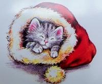 Christmas card as postcard #8 - cat
