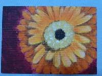 Happy Painting ATCs ... O'Keefe