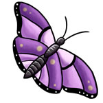 Pocket Letter Newbies~ Butterfly theme