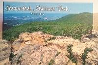 Envelope of 5 Postcards - sender's choice - US onl