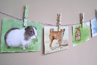 WPS - Animal Postcard #23