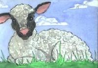 Drawn or Painted - July Sender's choice