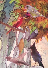 Aviary/garden bird cage