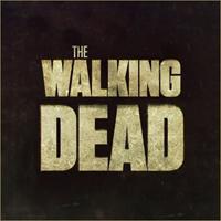 HD/HP The Walking Dead ATC (Round 2)