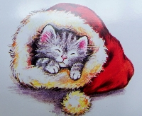 Christmas card as postcard #8 - Cats