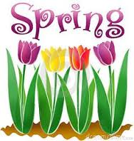The Elements of Spring!
