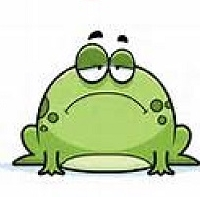 APDG ~ Did you know…April is National Frog Month