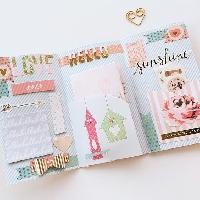 Beginner Flip Book - International