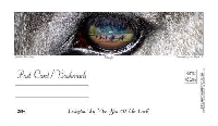 Postcard or bookmarks? #4