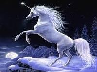 APDG ~ Unicorns