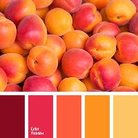 Color Palette Zine
