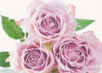 (PCG) Themed Postcard - Floral - (07)