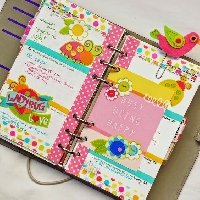 *USA* Monthly Planner Kit #6 - Brights