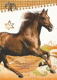 AN Horse Postcards