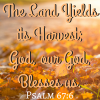 CSG~ Bountiful Blessings ✝ Growing with God #1