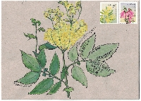 Botanical Mail Art & Goodies Swap #1