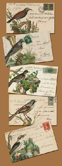 Bird Mail Art & Goodies Swap #1