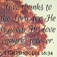 PW 🦃 Thanksgiving Pocket Letter