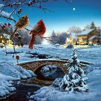 Christmas/Holiday card swap #2 - Animal-s