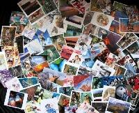 Max Partner Postcard Swap USA